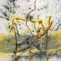 Elianne Goedhart-Berentzen